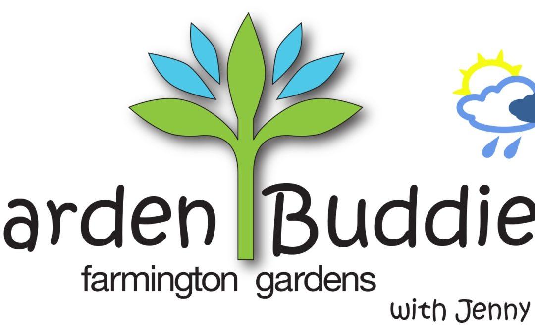 Spring Garden: Garden Buddies 2017