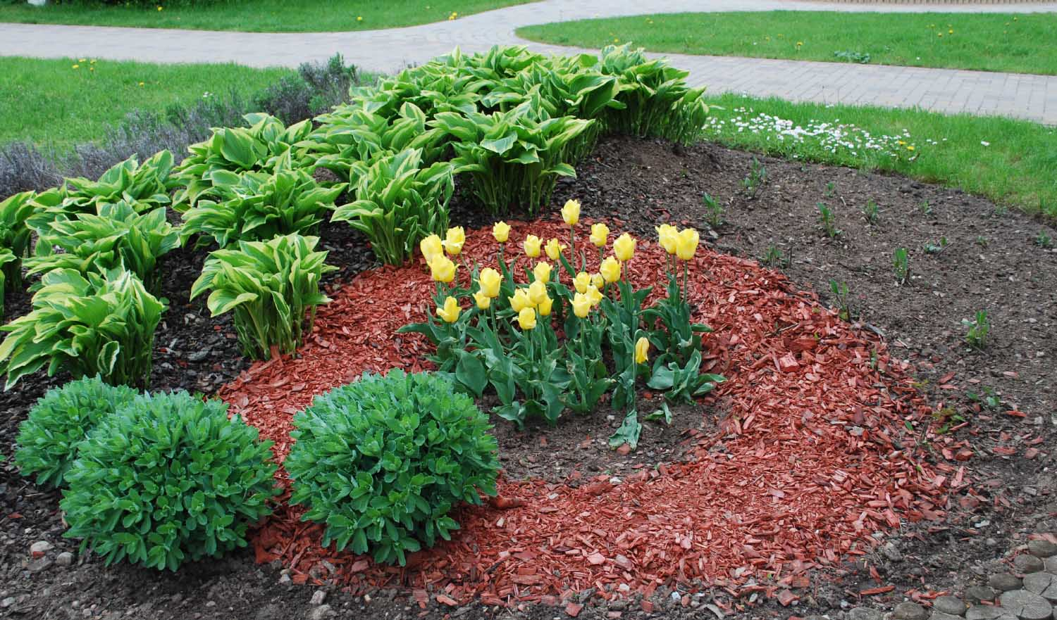 Image result for garden mulch