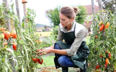 The Benefits of Organic Gardening