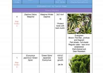 Design Plant List Example-1