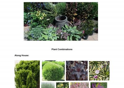 Design Plant List Example-5
